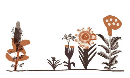 An original illustration of flowers by Cait McEniff
